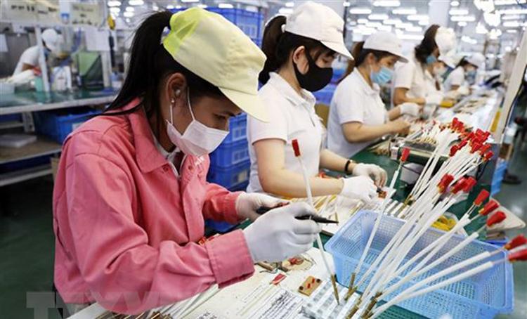 Dây chuyền sản xuất, lắp ráp linh kiện cho bếp gas của Công ty TNHH Paloma Việt Nam (vốn đầu tư của Nhật Bản) tại khu công nghiệp, đô thị VSIP Hải Phòng. (Ảnh: TTXVN)